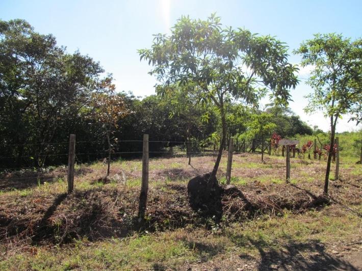 Trouver un terrain à bâtir pour une nouvelle maison